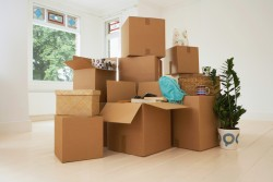 Moving Clutter