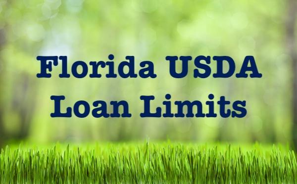 Florida usda loan limits for Rural development florida